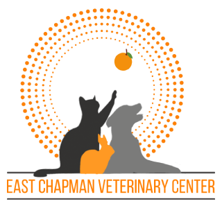 East Chapman Veterinary Center Logo, animal silhouettes, black cat playing with small orange fruit,, orange bunny, grey dog, in front of orange dotted circle